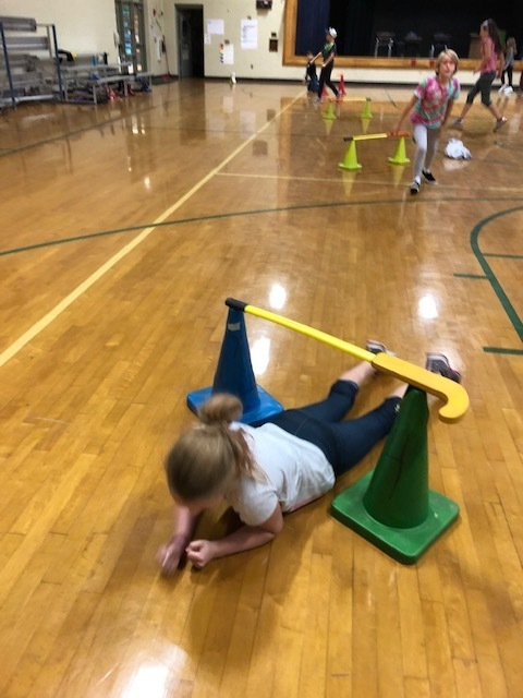 Exploring Fitness in P.E.